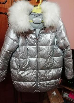 Зимняя серебреная куртка (пальто)