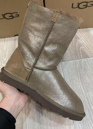 Ботинки ugg australia угги женские светло-коричневые змейка. код 10031