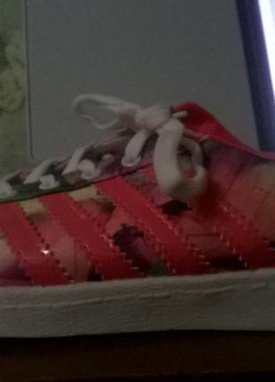 Кроссовки adidas superstar с полосами.