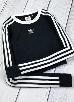 Укороченный лонгслив adidas 3 stripes original xs свитшот женский кофта