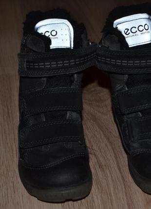 Зимние ботинки сапожки мальчику ecco  27р