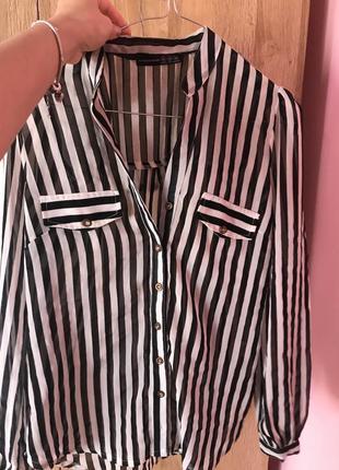 Блуза полосатая в полоску