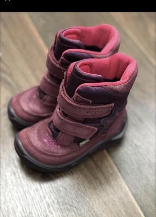 Зимние демисезонные сапоги ботинки ecco gore tex 24 15см