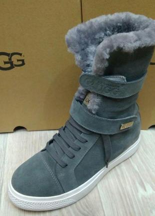 Ботинки серый замш трансформер серые  мини ugg уг угги угг australia