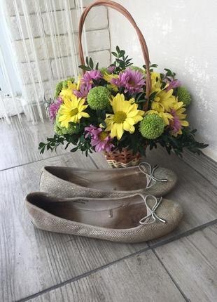 Золотисто серебристые балетки туфли next