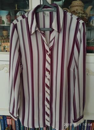 Блуза рубашка новая модная полоска размер 52/54