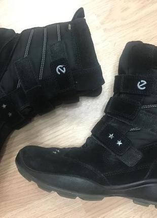 Сапоги ecco зимние термо ботинки модные молодежные