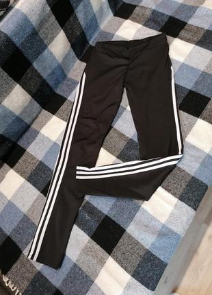 Adidas спортивные штаны - легенсы