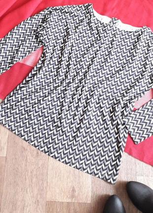 Хлопковая блуза esmara германия