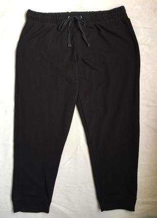 Теплые спортивные домашние брюки 4xl (56)