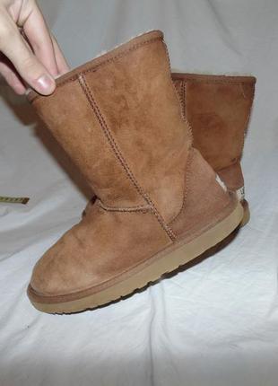 Сапоги ботинки ugg australia оригинал размер 38 по стельке 24.5 см