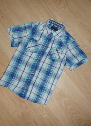 Тениска на 5 лет