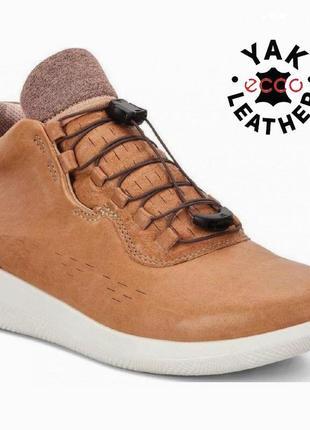 Новые кожаные кроссовки ботинки экко ecco scinapse р.38 оригинал таиланд