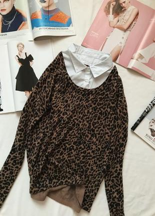 Свитер блуза, леопардовый свитер, джемпер, кофта блузка