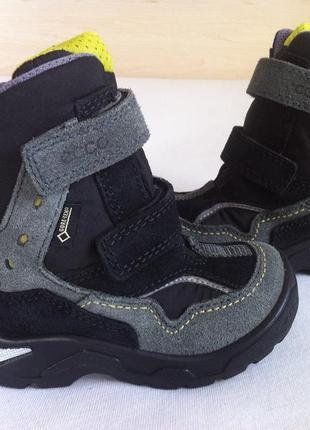 Зимние ❄️сапоги ,ботинки ecco с мембраной gore-tex ❄️размер 24 оригинал ❗❗❗