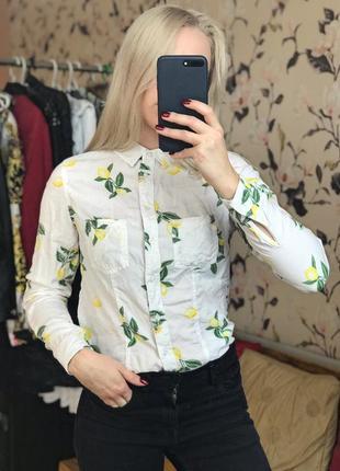 Стильная рубашка , модная рубашка с лимонами , актуальная рубашка