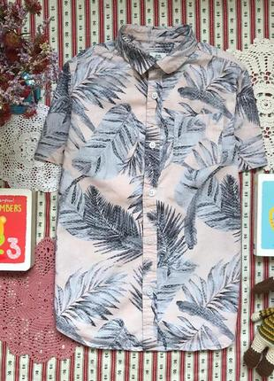 Рубашка принт river island на 7-8 лет