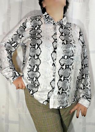 Шеловая блузка в змеиный принт