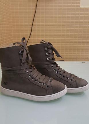 Стильные женские ботинки ugg original