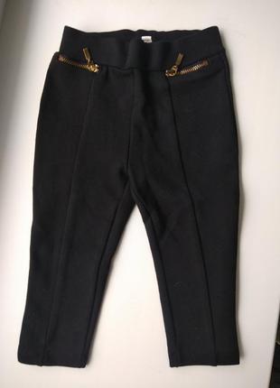 Брюки, штаны, лосины