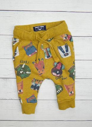 Стильные штаны от next, для мальчика 3-6 мес.