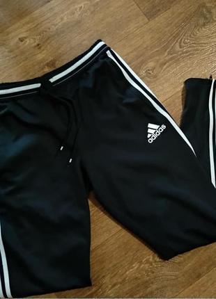 Adidas адидас клтмакул спортивки спортивные штаны