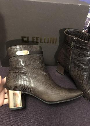Итальянские демисезонные ботинки fellini