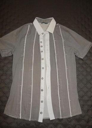 Мужская приталенная рубашка в полоску