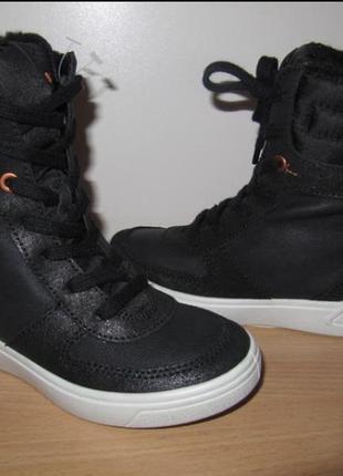Зимние ботинки ecco ginnie, размер 31