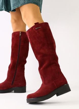 Lux обувь! новинка 😍 зимние натуральные высокие сапоги трубы марсала