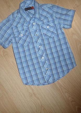 Тениска на 4-5 лет