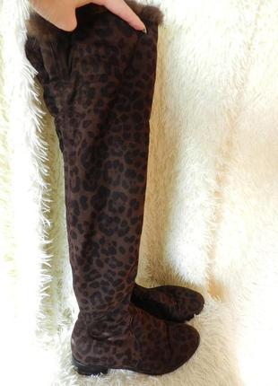 ✅ шикарные ботфорты леопард с опушкой из меха норка