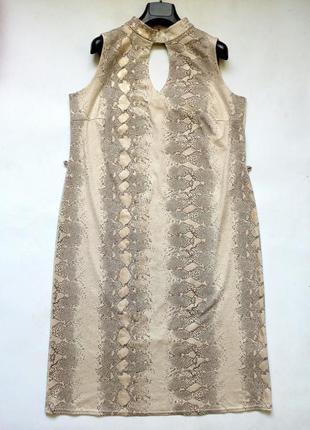 Красивое платье dorothy perkins 16-18