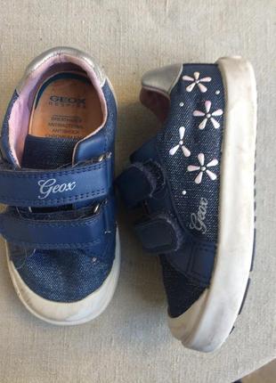 Geox  известный бренд  кеды