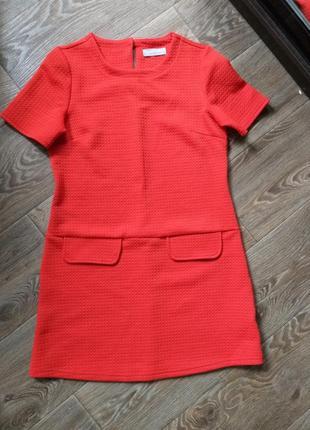 Красное платье dorothy perkins s-m