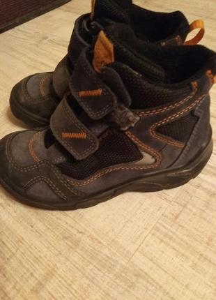 Ботинки ecco 29 р. gore-tex