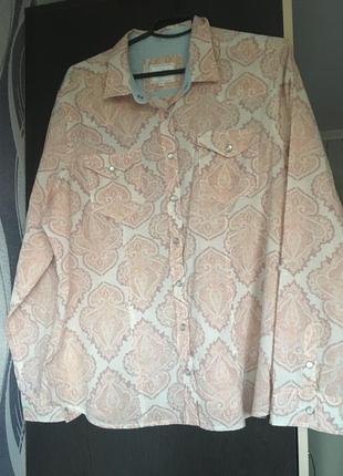 Рубашка бренд блуза котон