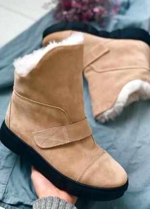 Lux обувь! шикарного качества зимние натуральные сапоги угги замшевые! есть выбор цвета!