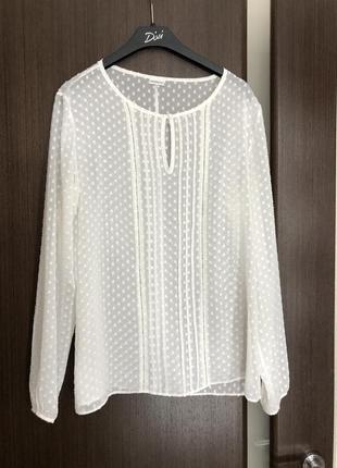 Блуза прозрачная в горошек
