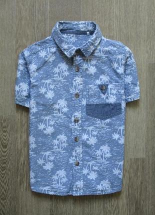 Модная пляжная тениска