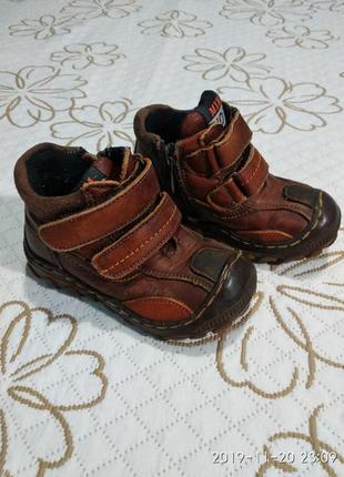 Черевики ботинки шкіра