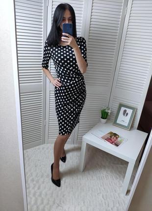 Платье-миди в горошек next, p-p uk 12/м