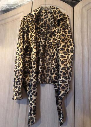 Рубашка, сорочка, леопард, тренд, принт, тигровый