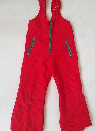 Лыжные штаны красные