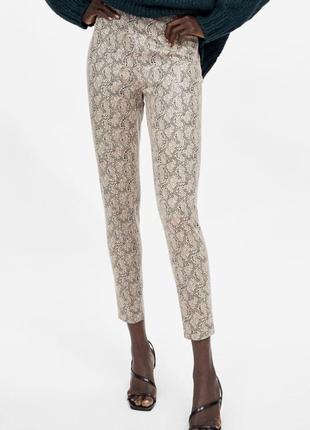 Zara animal print штаны/ леггинсы змеиный принт/ брюки, джинсы