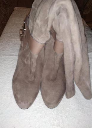 Бежеві осінні чоботи замш натуральний