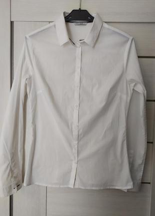 Белая рубашка из плотного хлопка calliope, l