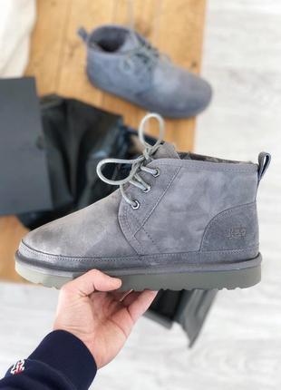 Зимние❄ мужские сапоги угги 🔥 ugg neumel gray люкс качество