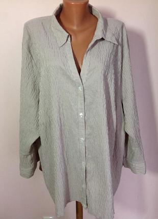 Немецкая фирменная большая блузка- рубашка./62-64/ ulla popken