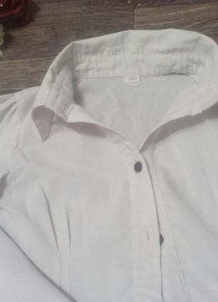 Рубашка и блузочка